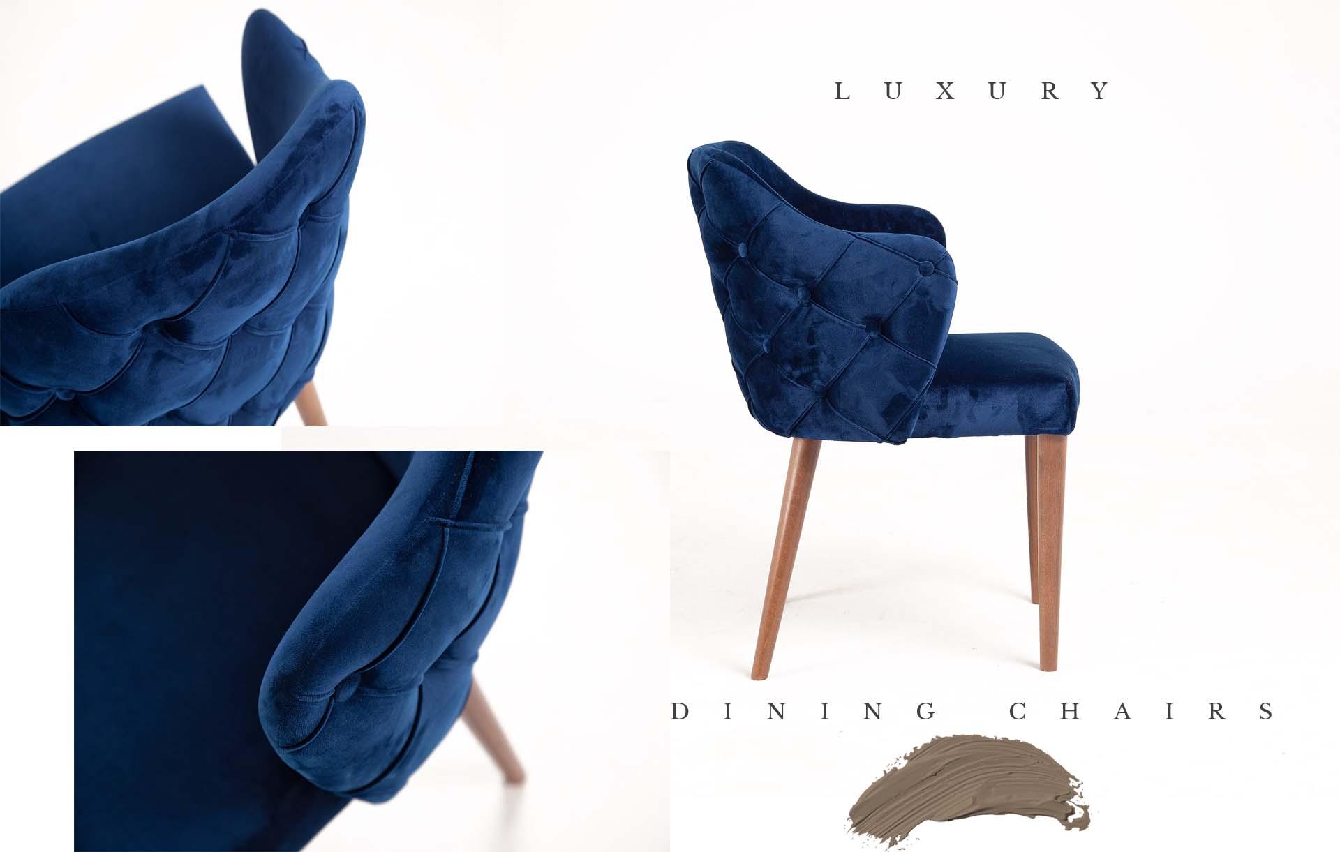 Luxury_dining_chairs_Urvission_Interiors