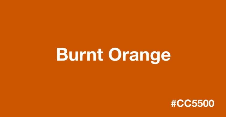 Burnt_orange_colour_Urvission_Interiors